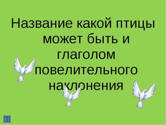 Название какой птицы может быть и глаголом повелительного наклонения