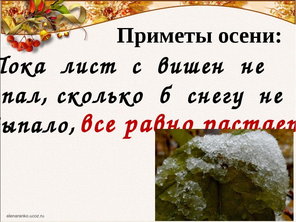 Приметы осени: Пока лист с вишен не опал, сколько б снегу не выпало, все равн...