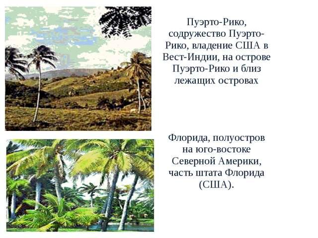 Пуэрто-Рико, содружество Пуэрто-Рико, владение США в Вест-Индии, на острове...