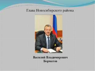 Глава Новосибирского района Василий Владимирович Борматов