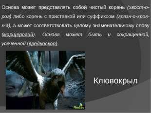 Основа может представлять собой чистый корень (хвост-о-рог) либо корень с при