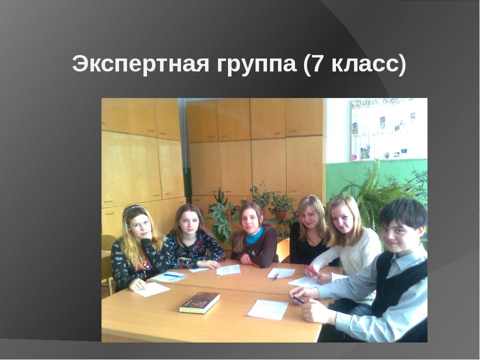 Экспертная группа (7 класс)