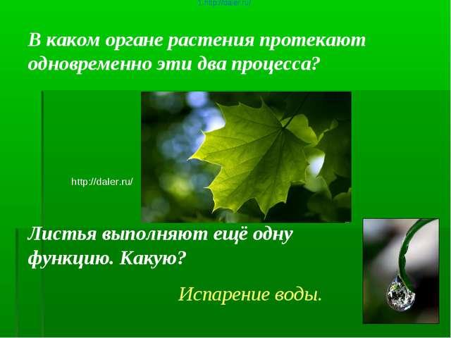 В каком органе растения протекают одновременно эти два процесса? http://daler...