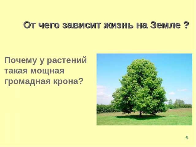 От чего зависит жизнь на Земле ? Почему у растений такая мощная громадная кро...