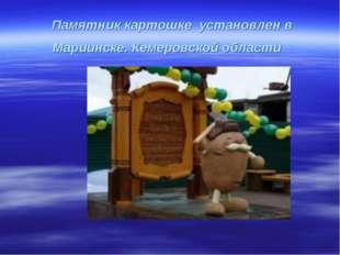 Памятник картошке установлен в Мариинске. Кемеровской области