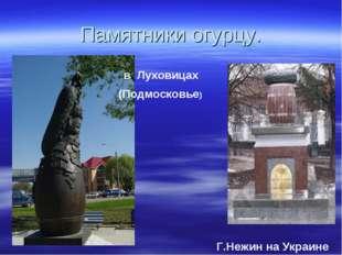 Памятники огурцу. Г.Нежин на Украине в Луховицах (Подмосковье)