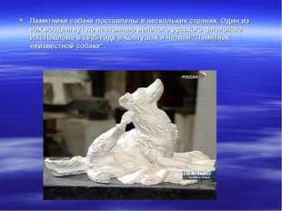 Памятники собаке поставлены в нескольких странах. Один из них воздвигнут по н