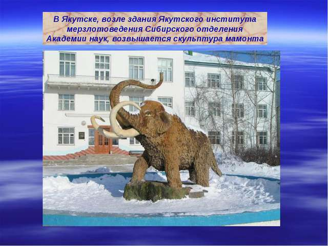 В Якутске, возле здания Якутского института мерзлотоведения Сибирского отделе...
