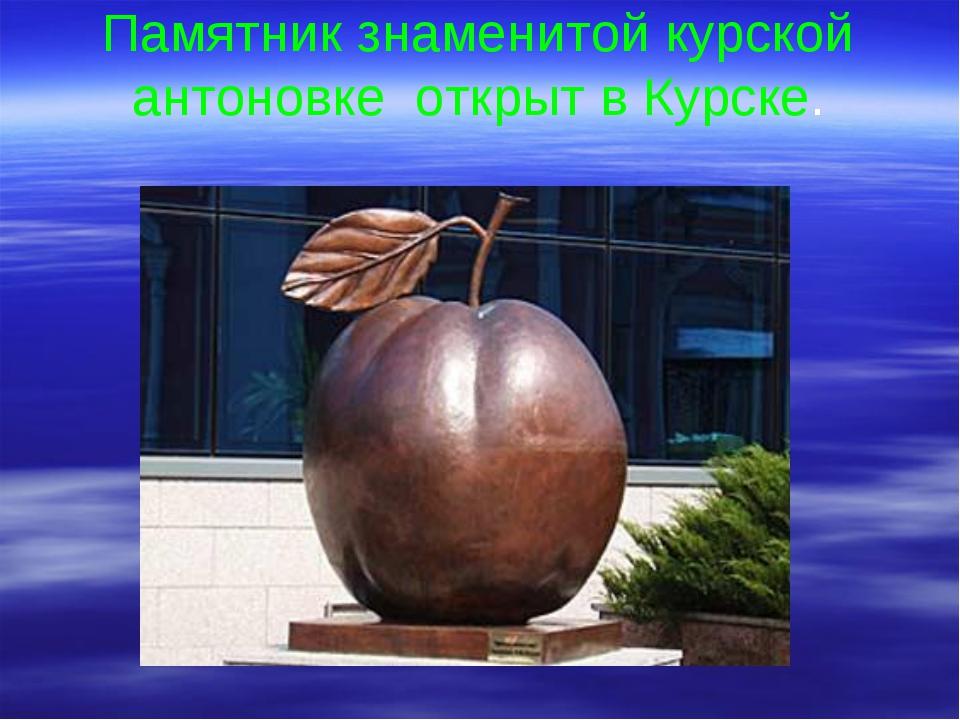 Памятник знаменитой курской антоновке открыт в Курске.