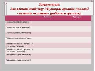 Закрепление: Заполните таблицу «Функции органов половой системы человека» (р