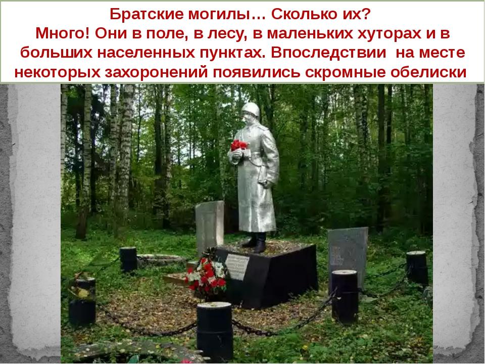 Братские могилы… Сколько их? Много! Они в поле, в лесу, в маленьких хуторах...