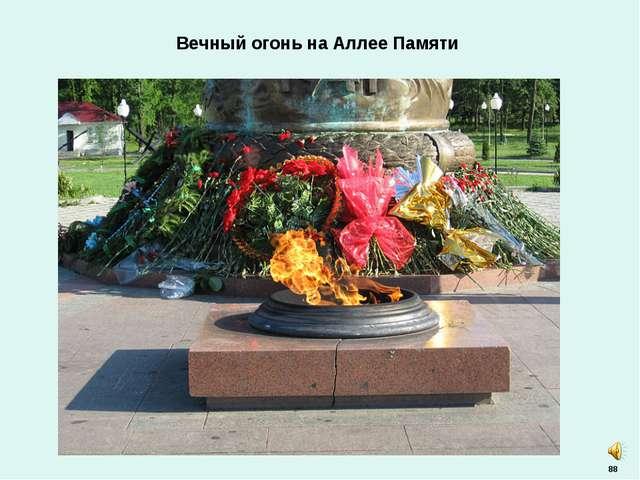 88 Вечный огонь на Аллее Памяти