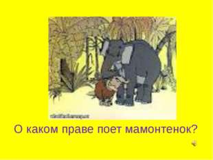О каком праве поет мамонтенок?
