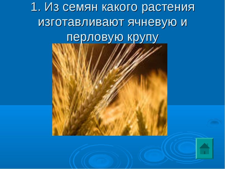 1. Из семян какого растения изготавливают ячневую и перловую крупу