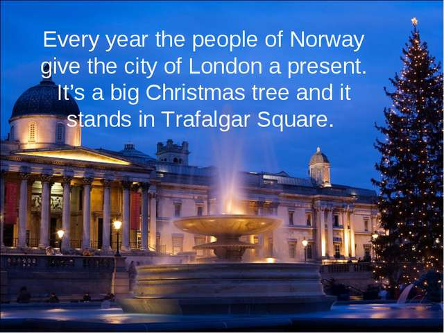 Every year the people of Norway give the city of London a present. It's a big...