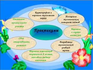 Озеленение пришкольного участка Практикумы Сбор лекарственных растений Разраб
