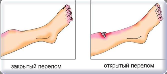 C:\Users\Администратор\Pictures\Рисунок2.png