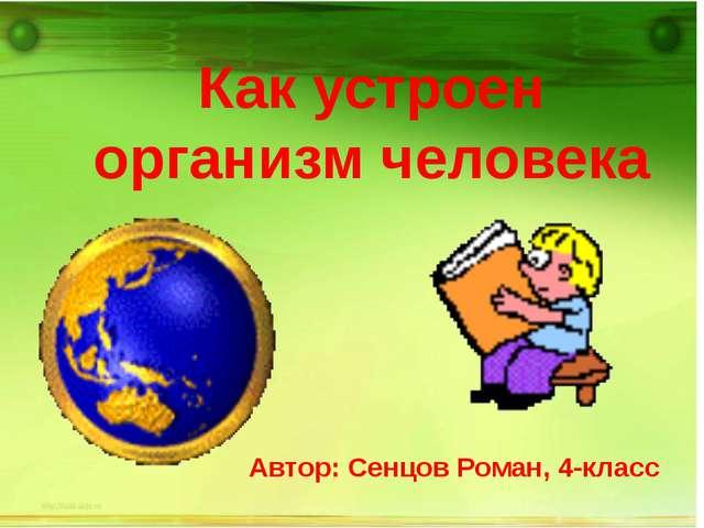 Как устроен организм человека Автор: Сенцов Роман, 4-класс