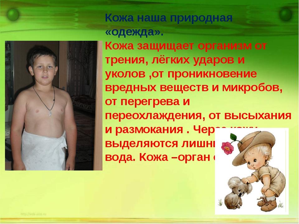 Кожа наша природная «одежда». Кожа защищает организм от трения, лёгких ударо...