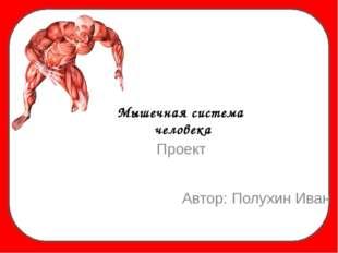 Мышечная система человека Автор: Полухин Иван Проект