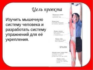 Изучить мышечную систему человека и разработать систему упражнений для её ук
