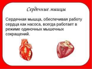 Сердечные мышцы Сердечная мышца, обеспечивая работу сердца как насоса, всегд