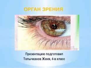 Презентацию подготовил Топычканов Женя, 4-в класс ОРГАН ЗРЕНИЯ