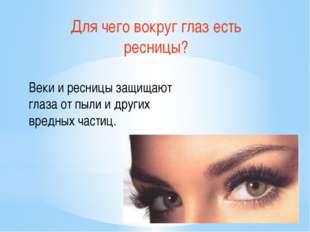 Для чего вокруг глаз есть ресницы? Веки и ресницы защищают глаза от пыли и др