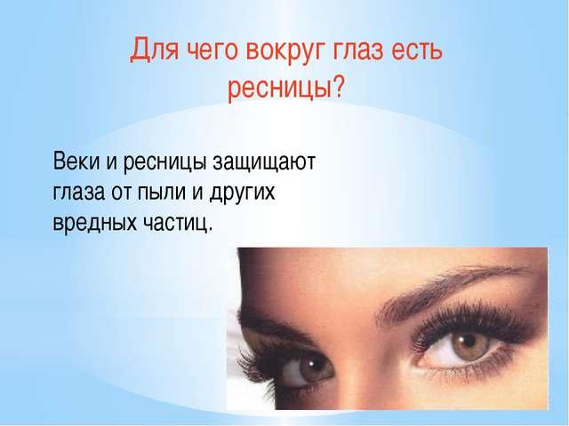 Для чего вокруг глаз есть ресницы? Веки и ресницы защищают глаза от пыли и др...