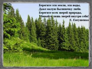 Берегите эти земли, эти воды, Даже малую былиночку любя. Берегите всех звере