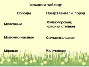 Холмогорская, красная степная Калмыцкая Симментальская Заполним таблицу Пород