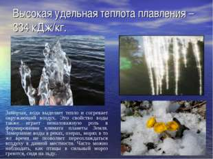 Высокая удельная теплота плавления – 334 кДж/кг. Замерзая, вода выделяет тепл