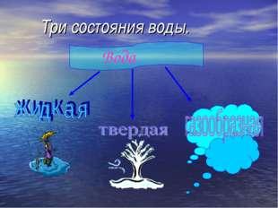 Три состояния воды. Вода
