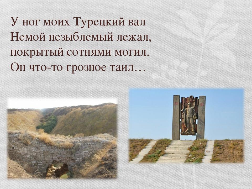 У ног моих Турецкий вал Немой незыблемый лежал, покрытый сотнями могил. Он чт...