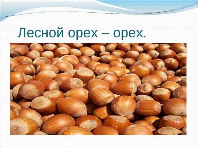 Лесной орех – орех.