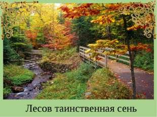 Лесов таинственная сень