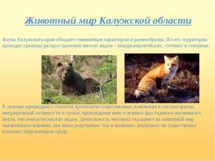 Животный мир Калужской области Фауна Калужского края обладает смешанным харак