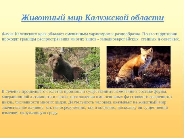Животный мир Калужской области Фауна Калужского края обладает смешанным харак...