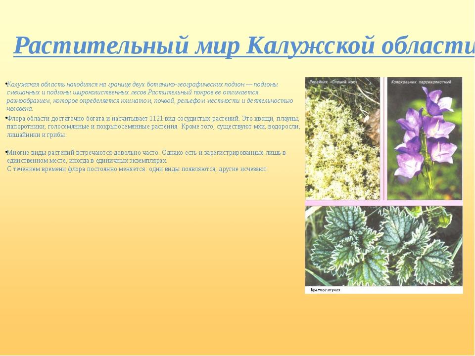 Растительный мир Калужской области Калужская область находится на границе дву...