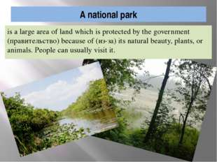 A national park is a large area of land which is protected by the government