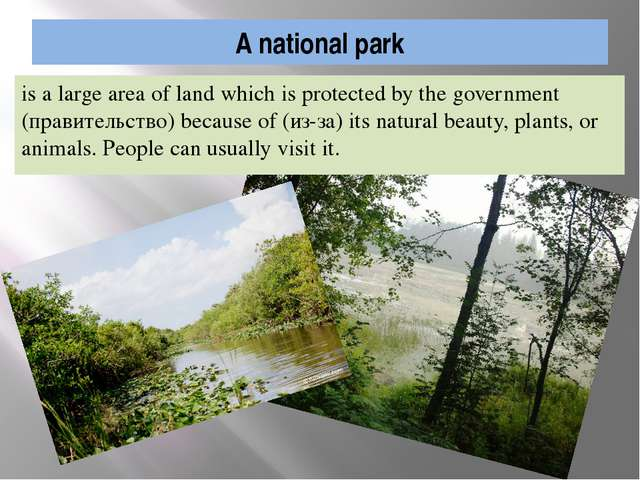 A national park is a large area of land which is protected by the government...