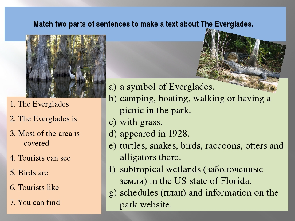 Match two parts of sentences to make a text about The Everglades. 1. The Eve...