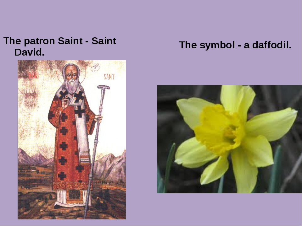 The patron Saint - Saint David. The symbol - a daffodil.
