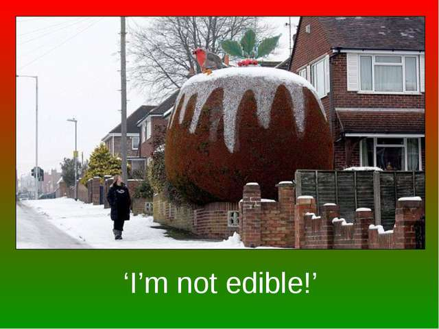 'I'm not edible!'