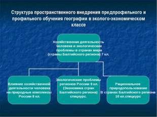 Структура пространственного внедрения предпрофильного и профильного обучения