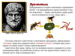 Аристотель Придерживался теории спонтанного зарождения жизни. Он придерживалс
