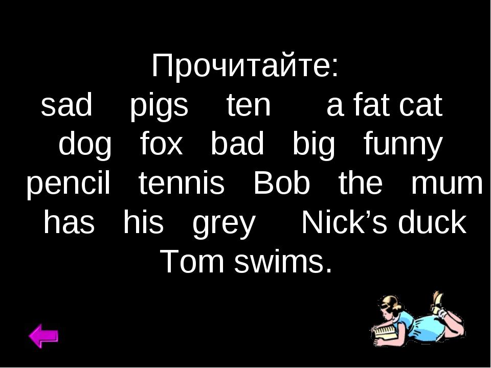 Прочитайте: sad pigs ten a fat cat dog fox bad big funny pencil tennis Bob th...