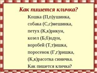 Как пишется кличка? Кошка (П,п)ушинка, собака (С,с)мешинка, петух (К,к)рикун,