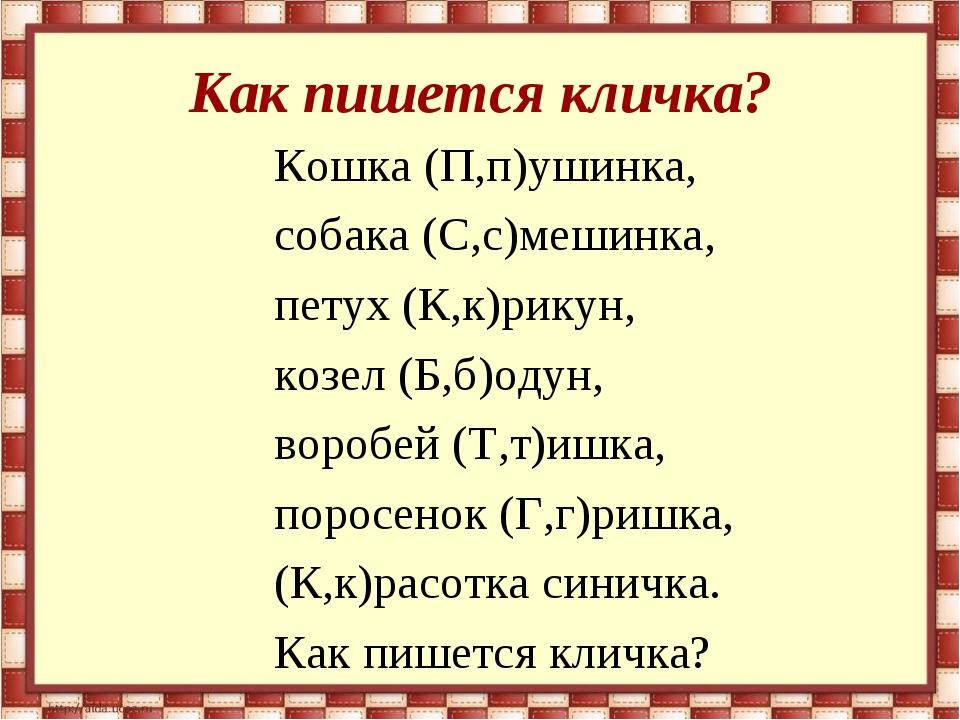 Как пишется кличка? Кошка (П,п)ушинка, собака (С,с)мешинка, петух (К,к)рикун,...