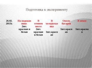 Подготовка к эксперименту 26.02. 2013г. Наподокон нике 2шт.краснаяибелая Втем